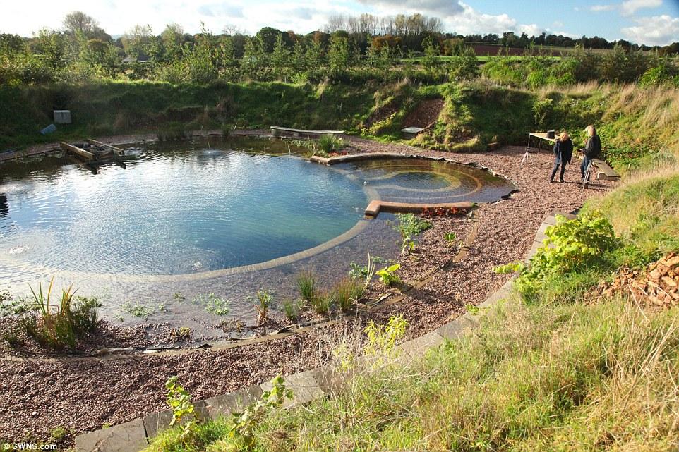 Natural Pond Filter System