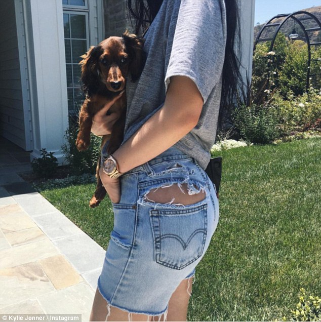 Flaunting what she's got!Kylie Jenner showed off her cute Dachshund puppy Ernie along with her exposed bum which looked pert in a pair of ripped jean shorts on Instagram on Saturday