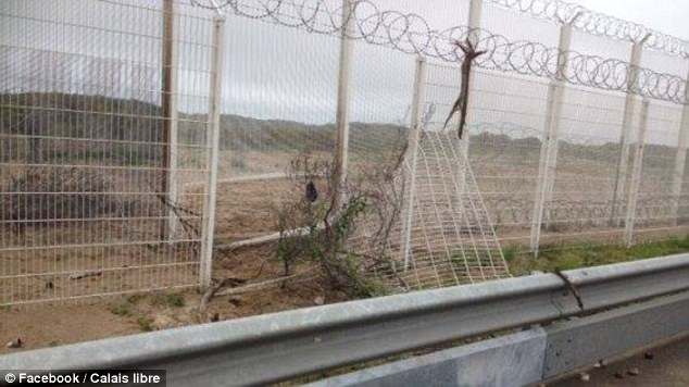 UKIP's defence spokesman Mike Hookem immediately linked immigration to Britain's membership of the EU. Pictured: A damaged fence