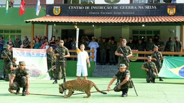 Juma the jaguar was held on a chain by two members of the army during the Olympic torch relay in Manaus