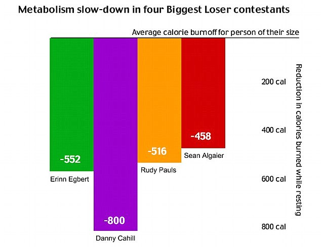 The metabolisms of four contestants slowed down dramatically, causing them to burn off far fewer calories per day than someone of their respective weight ought to