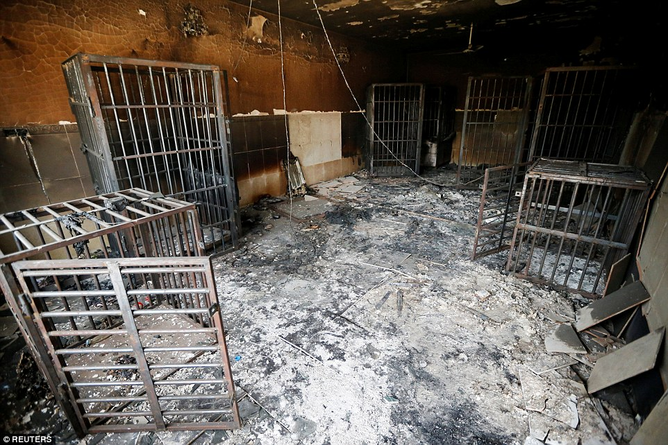 Human cages were discovered in the burned out prison belonging to Islamic State in Fallujah after government forces recaptured the city