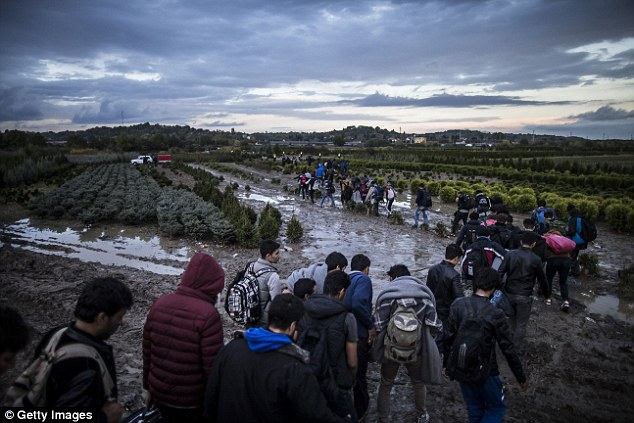 Re-homing: Despite polls suggesting Hungary will reject the refugee quota, the country has no plans to leave the EU altogether as it is heavily reliant on subsidies. Pictured, migrants and refugees after crossing the border at Zakany, Hungary