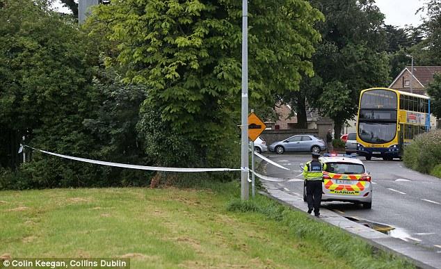 Después, la mujer fue arrastrada a un parque en la carretera contigua y violada en Clondalkin (en la foto), seis millas fuera el centro de Dublín