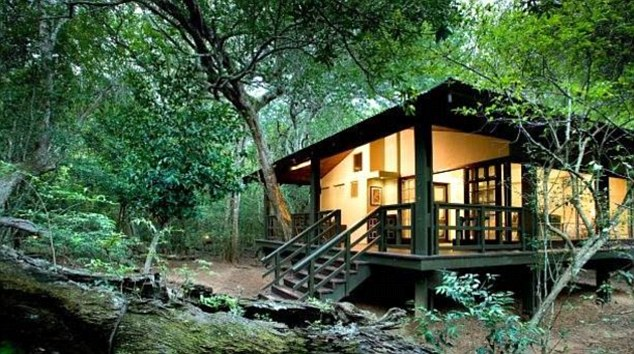 Guests can spot the big five, dolphins and turtles at this lodge at the Phinda Game Reserve in South Africa
