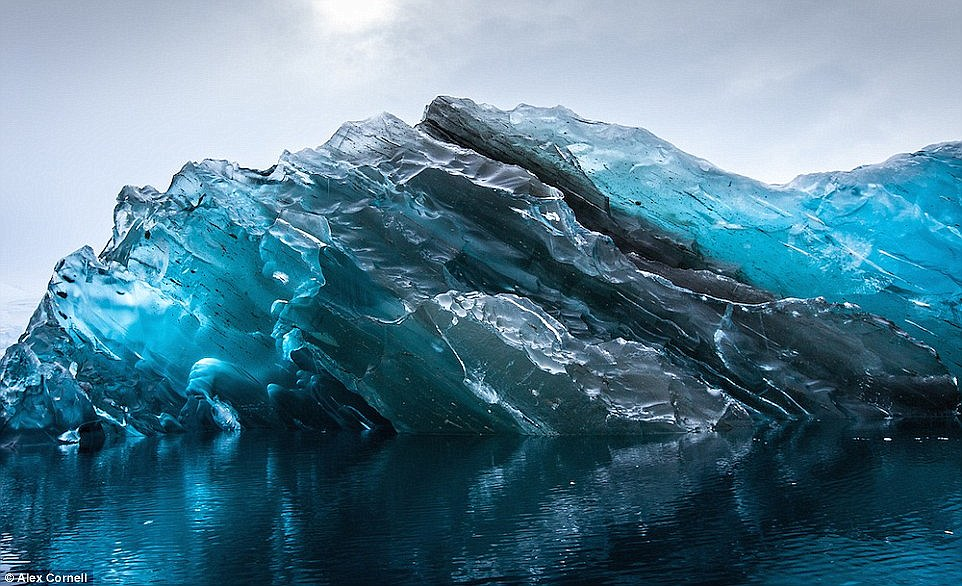 While in Antarctica, photographer Alex Cornell captured this rare phenomenon - a flipped iceberg caused by an imbalance in its frozen body