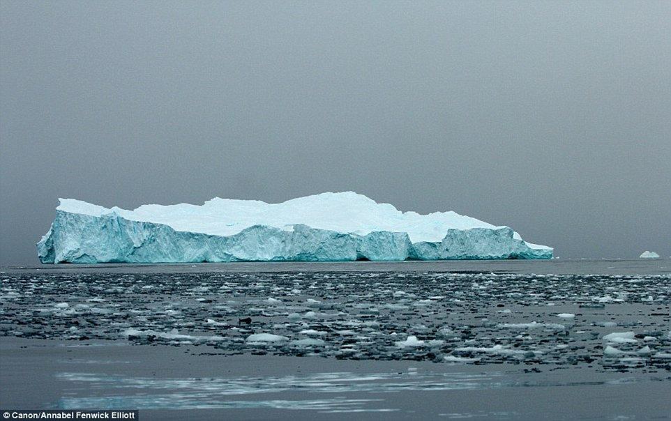 Glaciologist Robert Gilmore tells MailOnline Travel: 'They melt incredibly slowly - and they move slowly too, two knots at most depending on the current.' Pictured, an Antarctic tabular iceberg that has degraded and is falling apart