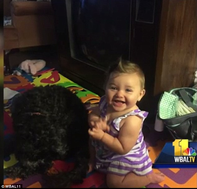 '[Polo] stayed with her the whole time in the bedroom and wouldn't even come downstairs to get out the door' said mom Erika, who was devastated at the dog's loss, calling him 'my first baby'