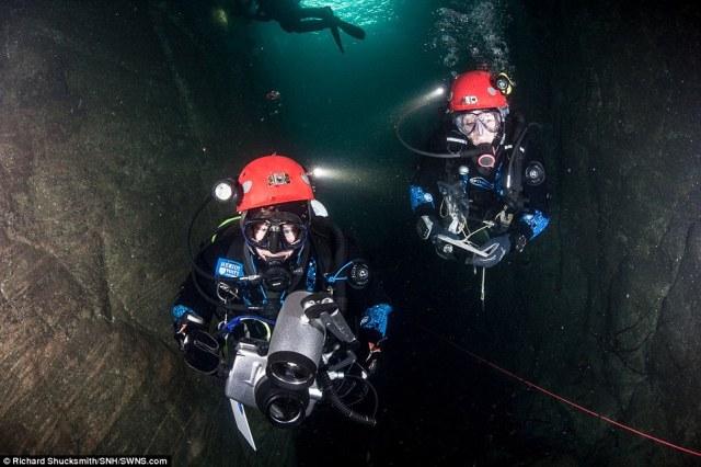 Cientistas da Universidade de Watt Heriot, Scottish Natural Heritage e os Museus Nacionais Scotland estabelecidos para documentar a estrutura das cavernas submersas, bem como a riqueza da vida que eles contêm