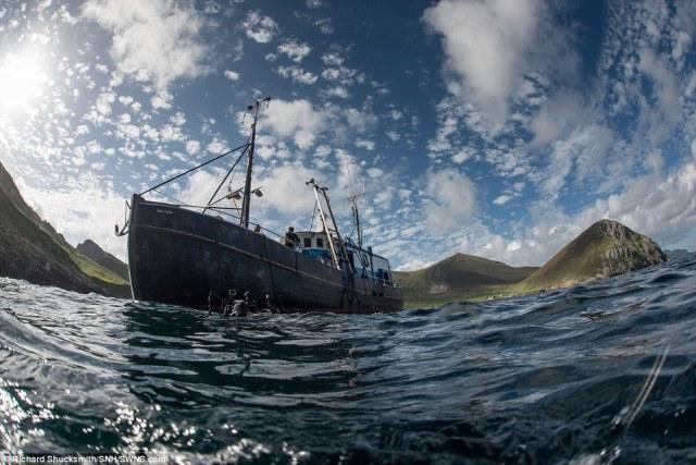 A expedição estabelecido a bordo de navio de pesquisa mergulho MV Halton (foto) na Vila Bay, St Kilda, com uma equipe formada por mergulhadores, premiados fotógrafos de vida selvagem e cientistas