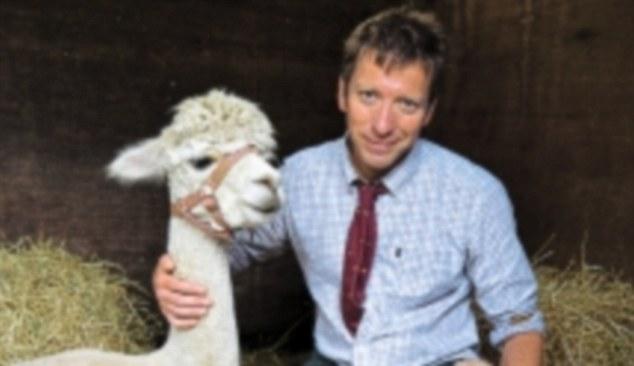 An Alpaca Orgy A Great Dane Who Swallowed A Sofa And A