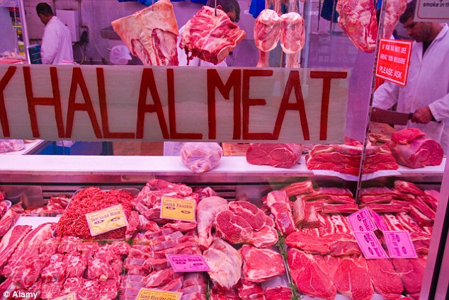 In a number of Muslim abattoirs animals are not stunned before slaughter over fears it is not permissible, or 'halal' but research suggests this is due to ignorance of the process (file image)