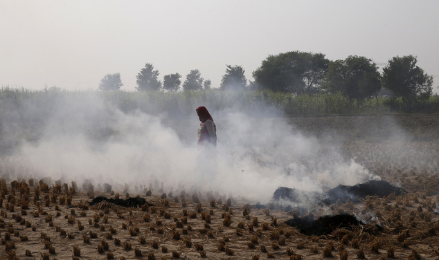 In this Friday, Nov. 4, 2016 photo, a farmer walks through smoke caused by farming waste set on fire at Palwal, in the state of Haryana, south of New Delhi, India. Even as the Indian capital hit a new low on air pollution, many of the problems that turn Delhi's air so toxic continue unabated, like farmers in bordering regions continuing to burn crop waste. (AP Photo/Saurabh Das)