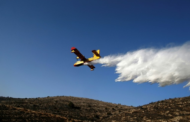 Firefighting planes from Israel and countries including Russia, Turkey, Greece, France, Spain and Canada dumped tonnes of water and retardants on wildfires