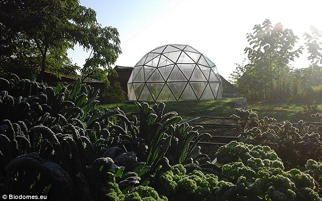 The sphere has 25% less surface area per volume enclosed than any other shape. 'The dome combines the inherent stability of triangles with the advantageous volume-to-surface-area ratio of a sphere