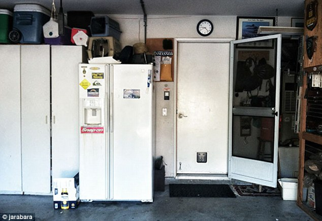 Do you see the dog trying to be a part of this garage picture? Look at the cat flap and you'll see it
