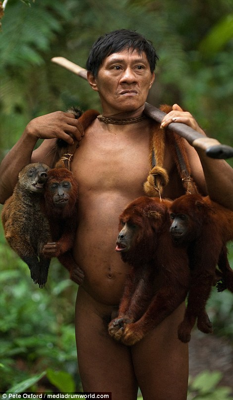 A good day's work: To Western eyes it might seem cruel but for the Huaorani hunting monkeys is really no different to British people hunting pheasants or rabbits