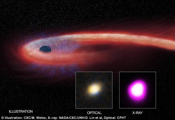 Massive black hole feasted on a giant star for 10 years