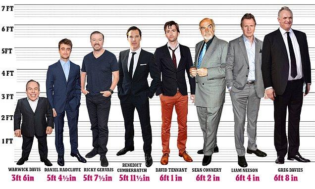 Tallest Men Hollywood