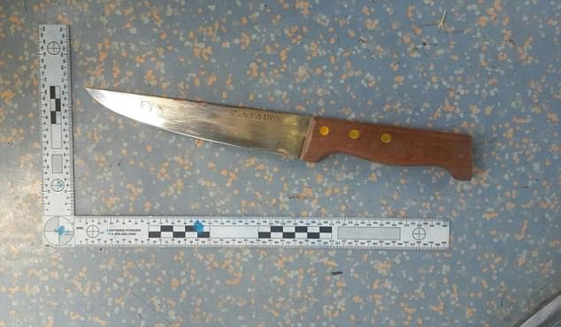 The British woman was given CPR at the scene before being taken to hospital with multiple stab wounds where she later died (murder weapon, pictured)