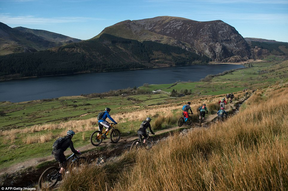 Camaraderie: Cyclists take part in the 'Snowdonia Mountain Bike Challenge' near Llanberis, north Wales, where they start and finish at the foot of Mount Snowdon