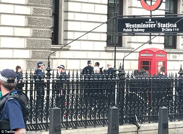 A large group of officers descended on the scene and the man was arrested next to the entrance to Westminster Underground Station in Whitehall