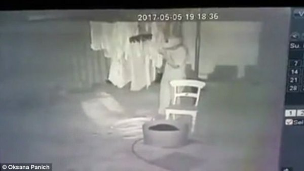 Man filmed sneaking into WA backyard and sniffing panties ...