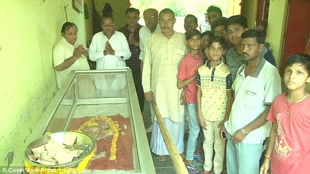 Hundreds of people from surrounding villages came to pray after coming to see the dead calf