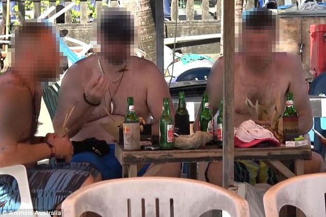 Tourists in Bali are unknowingly eating dog meat thinking it is chicken satay sticks, it has been claimed
