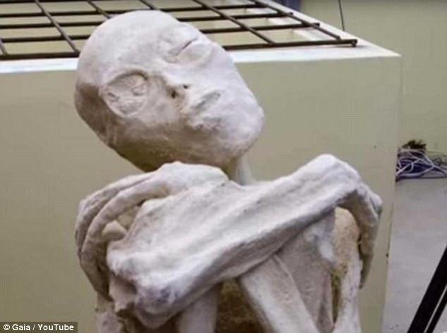 Nazca crani allungati