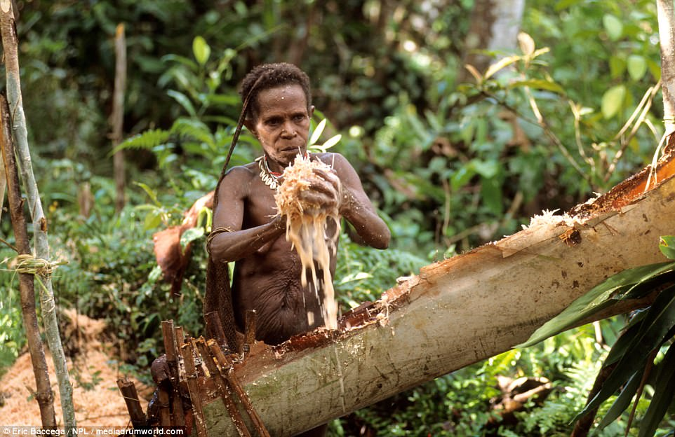 The tribe were accused of cannibalism although there is no firm evidence of them eating human flesh