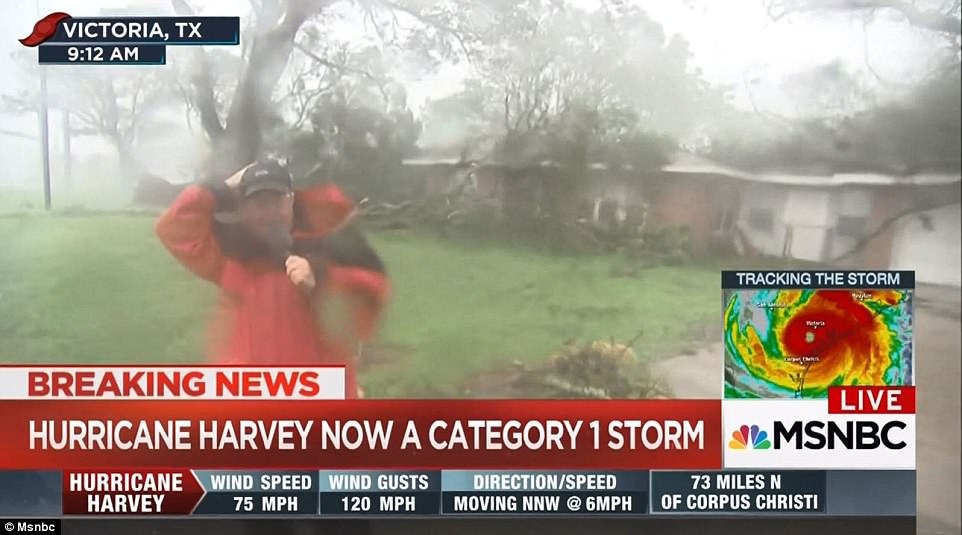 Thousands remained indoors even as Harvey was downgraded to a Category 1 storm with trees being knocked down and on-the-ground reporters forced to take cover (pictured)