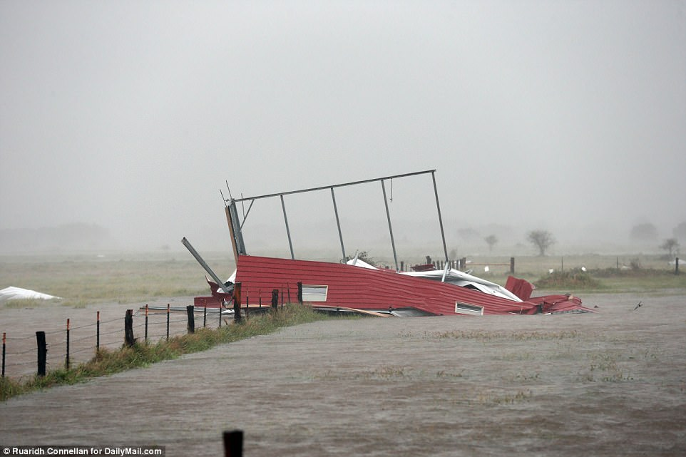 Destruction continued to spread on Saturday as homes crumpled and were subjected to massive flooding (pictured, Victoria, Texas)