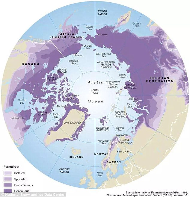 Permafrost - ground that has been frozen for at least two years - covers 25 per cent of the Northern Hemisphere, keeping ancient bacteria, viruses and carbon preserved and locked away, much like a freezer does. Pictured is a map of permafrost extent across Arctic region