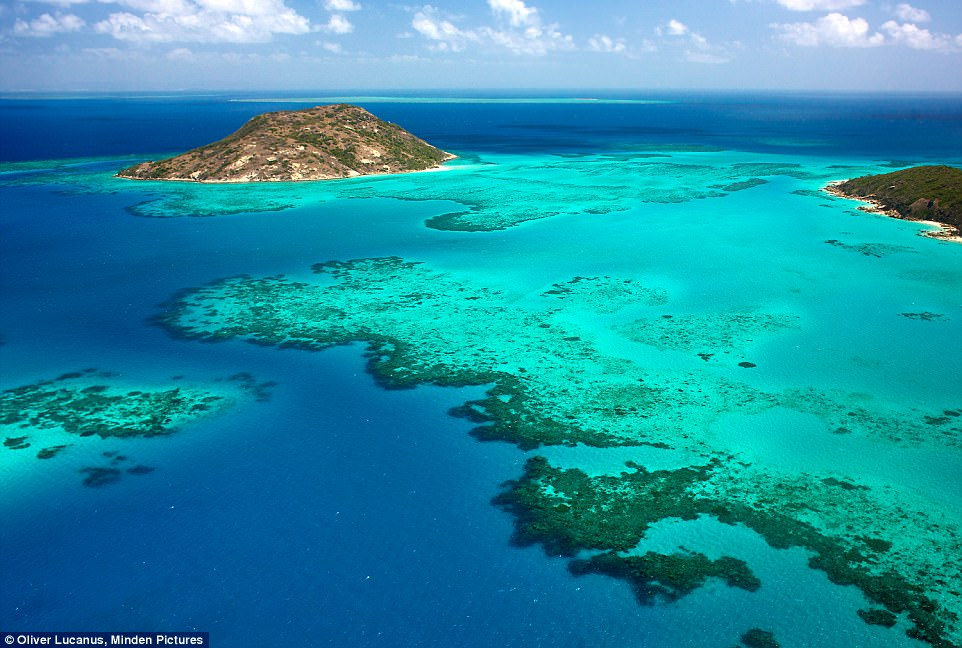 A tropical isle in the northern reaches of the Great Barrier Reef, Lizard Island is a 1,024ha national park with 24 sugar sand beaches