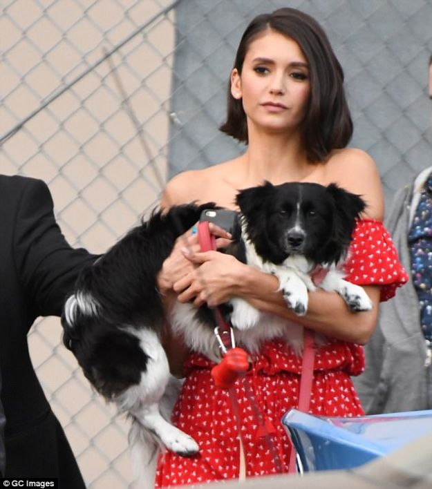 Canine companion: Nina carried a cute pooch while heading to the chat show studio