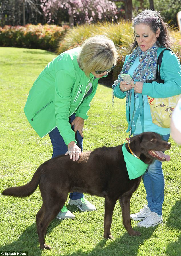 Paw-fect: It wasn't just people that Olivia was eager to meet either as she stopped to chat with a playful pooch who wore a fetching bandanna in the charity's signature lime green colour