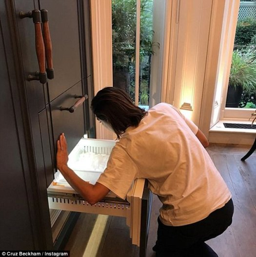Getting down and dirty! Despite her fame and fortune, son Cruz , 12, revealed Victoria isn't above handy-work around the house as she was pictured fixing the fridge