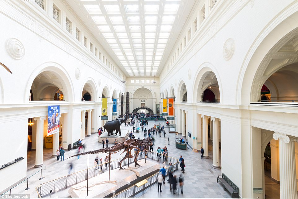 Family ties: Thanks to several child-friendly museums, Chicago is the perfect destination for a family holiday