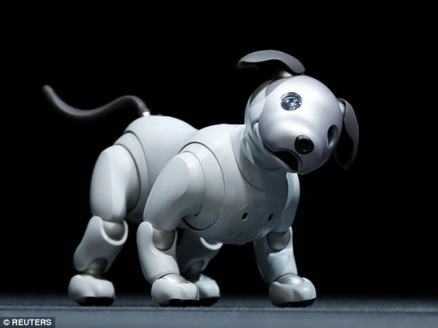 Sony has revived Aibo, a robot that learns how to interact with its owner and is 'capable of building loving relationships', according to Sony CEO Kazuo Hirai. The new version of the 30-centimetre (one foot) hound will launch in Japan in January  (pictured)