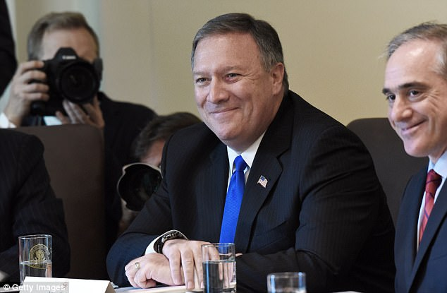 Program is said to be heralded by CIA Director Mike Pompeo, seen here at the White House in June