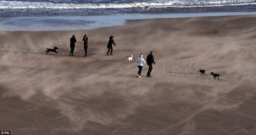 Dog walkers braced themselves as they faced strong winds which were whipping up the sand on Tynemouth beach