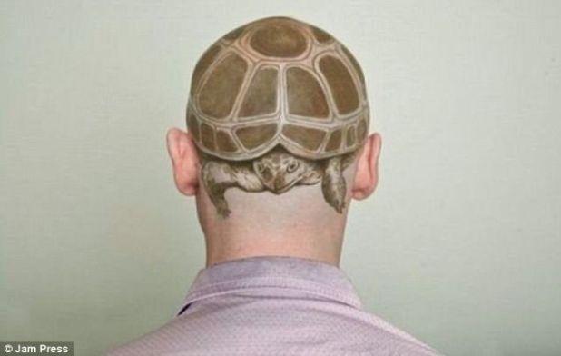 Este tatuaje le da un nuevo significado a la concha de tortuga: el caballero optó por un diseño extremadamente único de lo que solo podemos suponer es su animal favorito