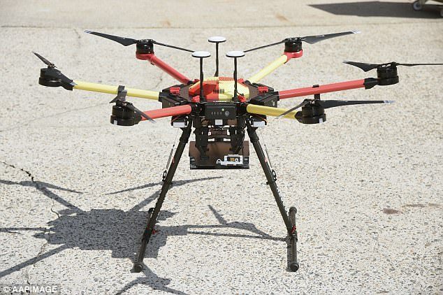 The Little Ripper drone has been used to back up Queensland and New South Wales lifeguards since the beginning of summer
