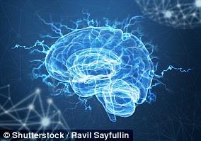 La demencia es un término general que se utiliza para describir una variedad de trastornos neurológicos.