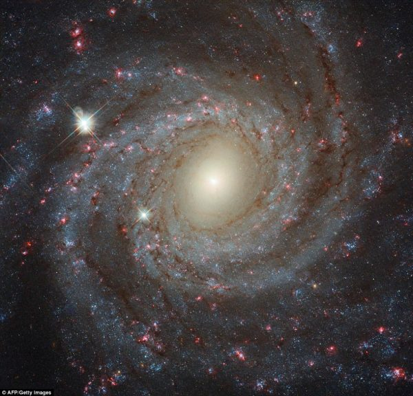 Hubble captures stunning head-on photo of spiral galaxy ...