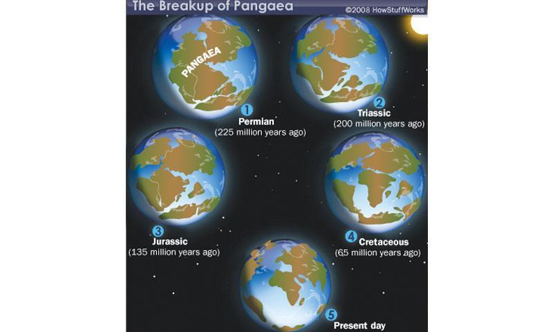 Continental Drift Pangaea The Supercontinent