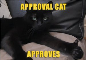 Approval Cat