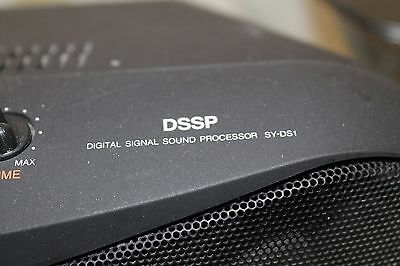Panasonic Dssp Sy-DS1 Speaker System - Digital Signal Sound Processor Works