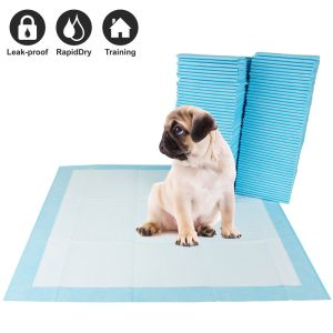 "100 Piece Pet Training Pads for Dog and Puppy Underpads, 22"" x 22"" PE-PAD"